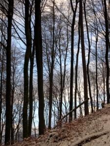 allenbach-christiane-premiere-neige-2017-33