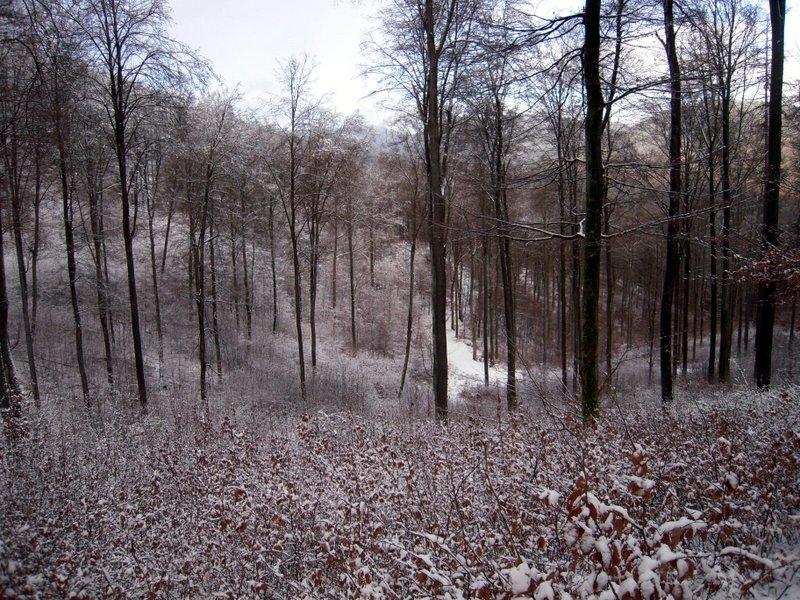 allenbach-christiane-premiere-neige-2017-39