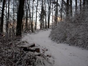 allenbach-christiane-premiere-neige-2017-52