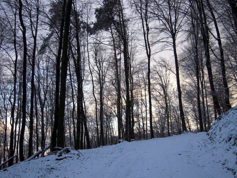 allenbach-christiane-premiere-neige-2017-57