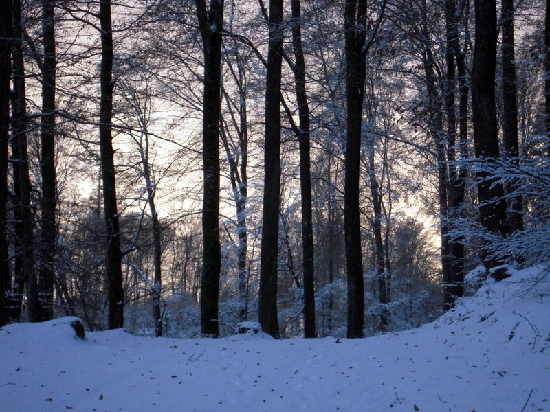 allenbach-christiane-premiere-neige-2017-58