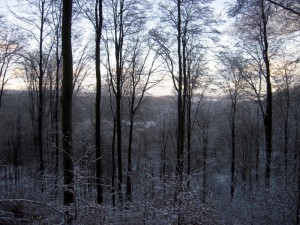 allenbach-christiane-premiere-neige-2017-59