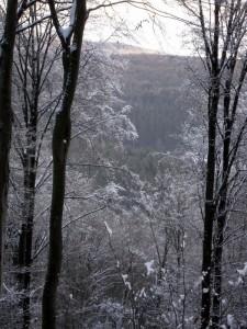 allenbach-christiane-premiere-neige-2017-61