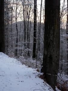 allenbach-christiane-premiere-neige-2017-62