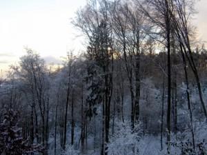 allenbach-christiane-premiere-neige-2017-65
