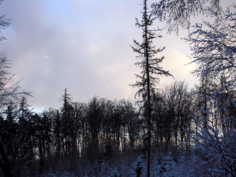 allenbach-christiane-premiere-neige-2017-66