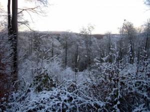 allenbach-christiane-premiere-neige-2017-67