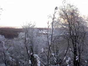 allenbach-christiane-premiere-neige-2017-68