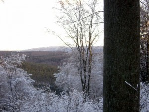 allenbach-christiane-premiere-neige-2017-69