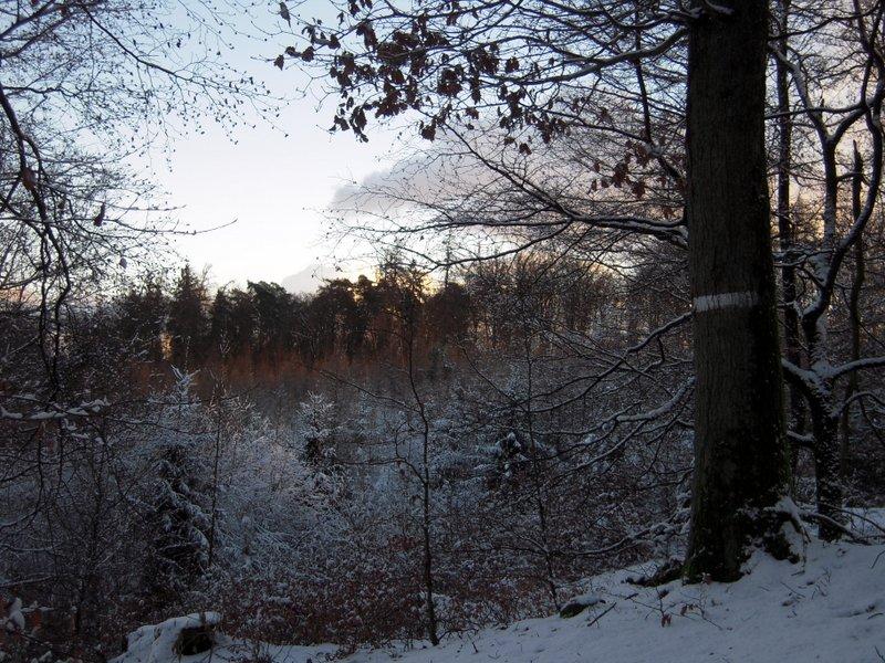 allenbach-christiane-premiere-neige-2017-70