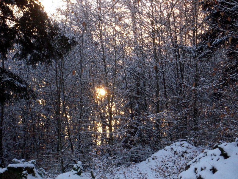 allenbach-christiane-premiere-neige-2017-71