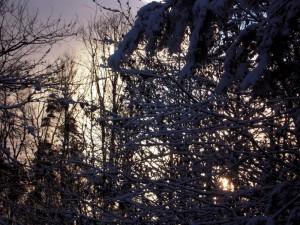 allenbach-christiane-premiere-neige-2017-77