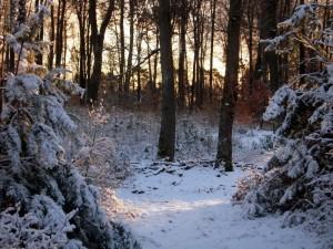 allenbach-christiane-premiere-neige-2017-79