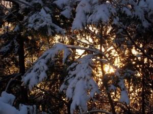 allenbach-christiane-premiere-neige-2017-87