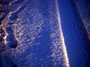 allenbach-christiane-premiere-neige-2017-91