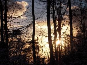 allenbach-christiane-premiere-neige-2017-93
