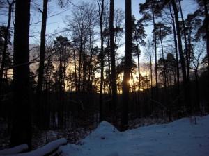 allenbach-christiane-premiere-neige-2017-96