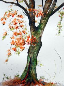 CHRISTIANE ALLENBACH 30 x 40 cm ARBRE 3 parc