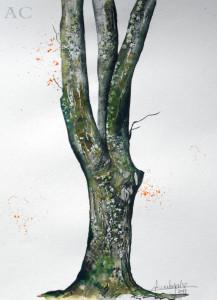 CHRISTIANE ALLENBACH 30 x 40 cm Parc ARBRE N° 02