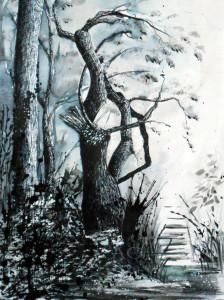 CHRISTIANE ALLENBACH 30 x 40 cm EXPEDITION