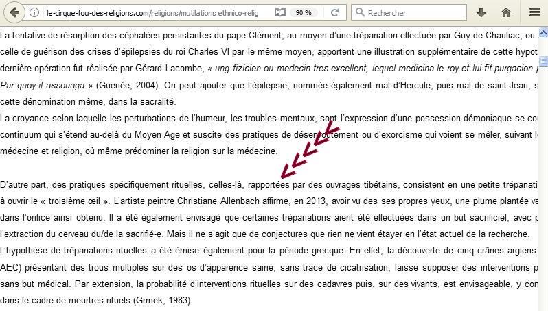 CHRISTIANE ALLENBACH VOL CONTENU_TEXTE