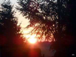 ALLENBACH CHRISTIANE LEVER SOLEIL