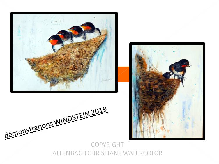 CHRISTIANE ALLENBACH DEMONSTRATIONS WINDSTEIN 2019