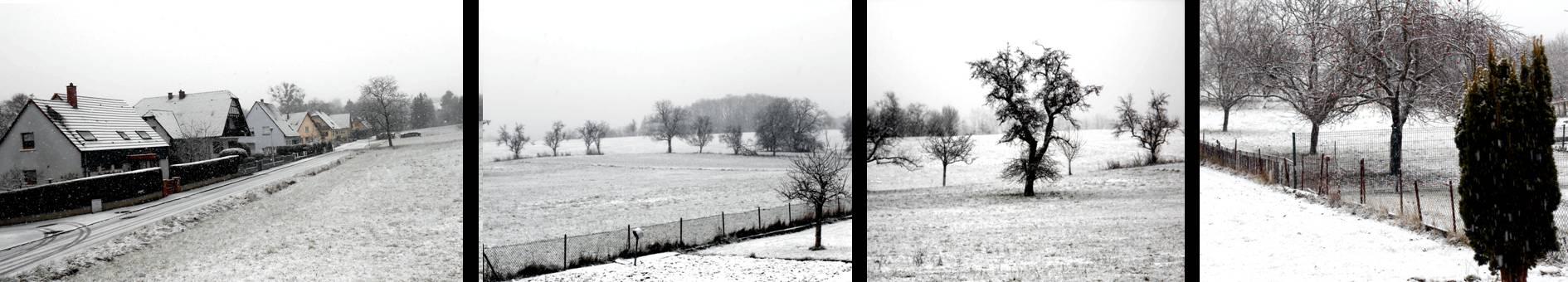 CHRISTIANE ALLENBACH 2020 2ème neige