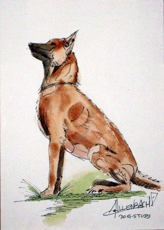 ALLENBACH CHRISTIANE STUDY DOG